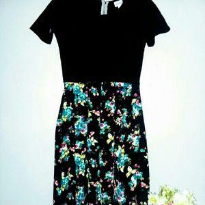 Nwot Lularoe dress